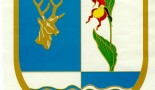 karacsonyfa-gyujtes